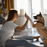 Pet-Friendly Homes: A Pet Owner's Guide to Home Buying